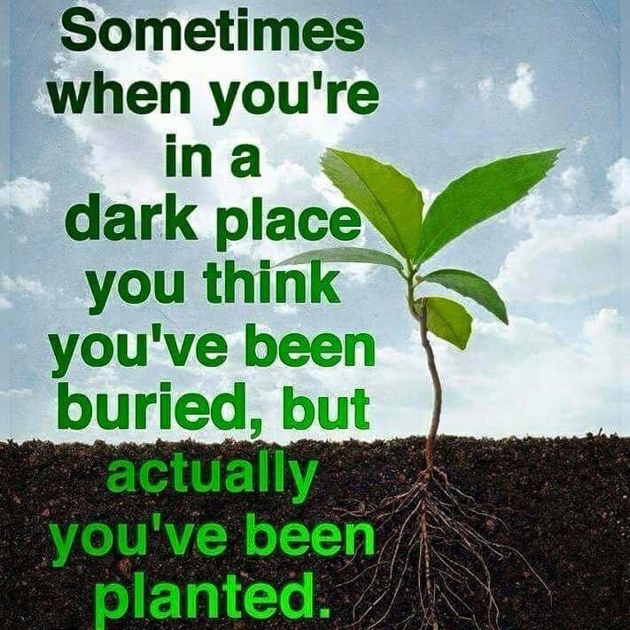 Buried vs Planted