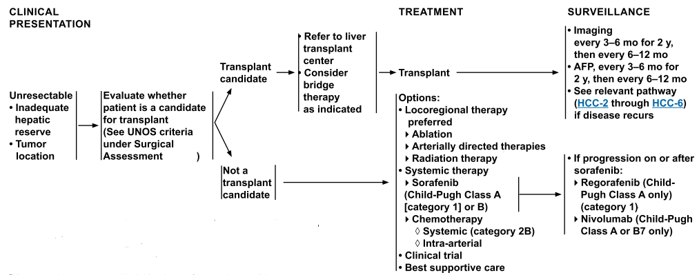 Therapy for Unresectable Hepatocellular carcinoma (HCC)