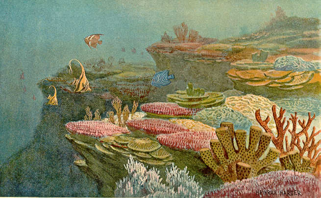 Ancient Coral Reefs (Painting)