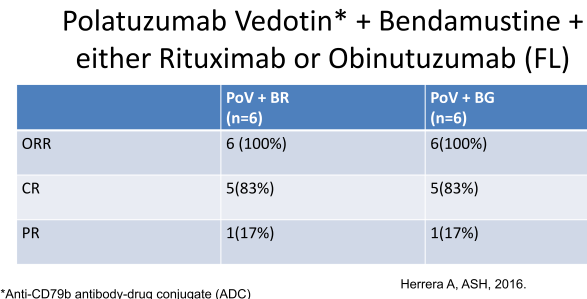 Polatuzumab Vedotin* + Bendamustine + either Rituximab or Obinutuzumab (FL)