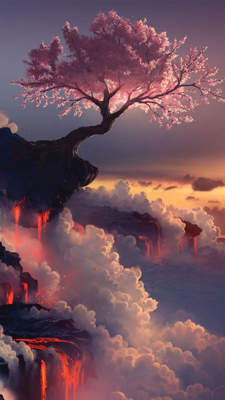 Cherry Blossom Tree at Fuji Volcano, Japan