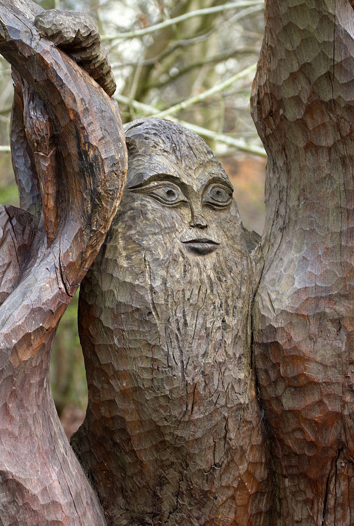 Carved Tree Seat Face