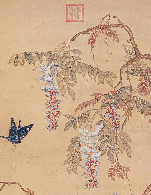 Butterfly and Chinese wisteria flowers (Painting)