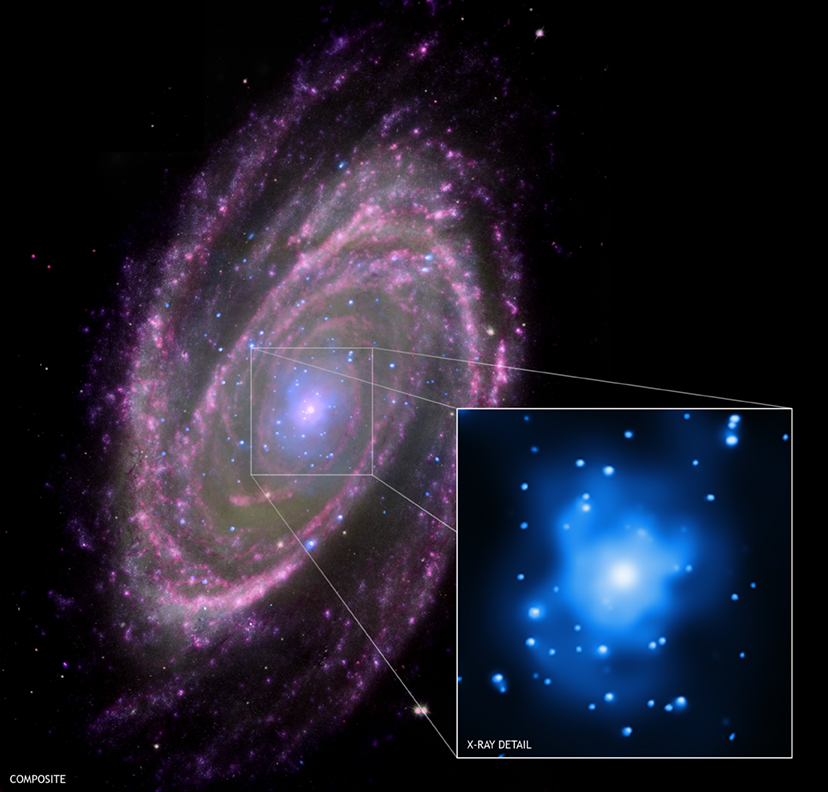 A composite NASA image of the spiral galaxy M81