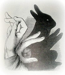 Hand Shadow: Rabbit