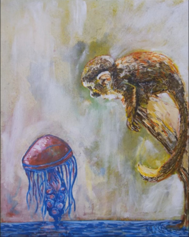 The Jelly Fish & The Monkey