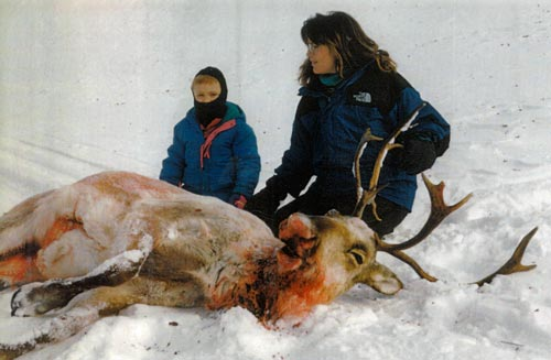 Sarah Palin shot & killed a caribou