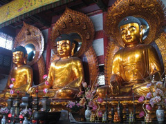 Buddhas of Three times, the past, the present and the future