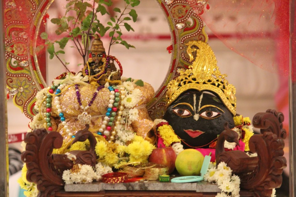 Tulasi-Saligrama Vivaha (The marriage of Tulsi and Lord Vishnu)