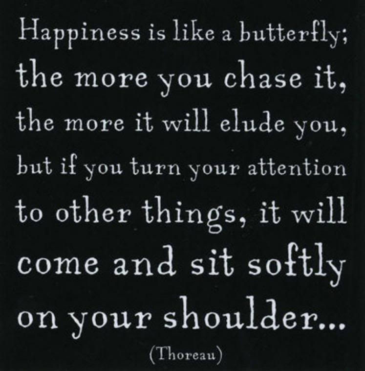 Happiness is like a butterfly