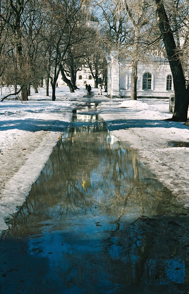 Reflections of trees and tract in Detinets of the city of Chernihiv
