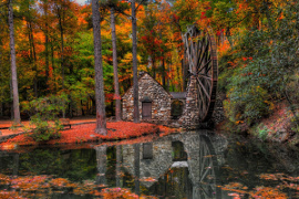 Forest Lake, Autumn Leaves & Water Mill