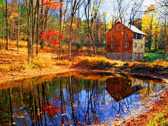 House Near Forest Pond Colorful Serenity Peaceful Lake