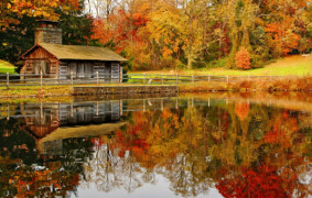 Fall Lake Serenity Clear Forest Pond Calm Quiet Autumn