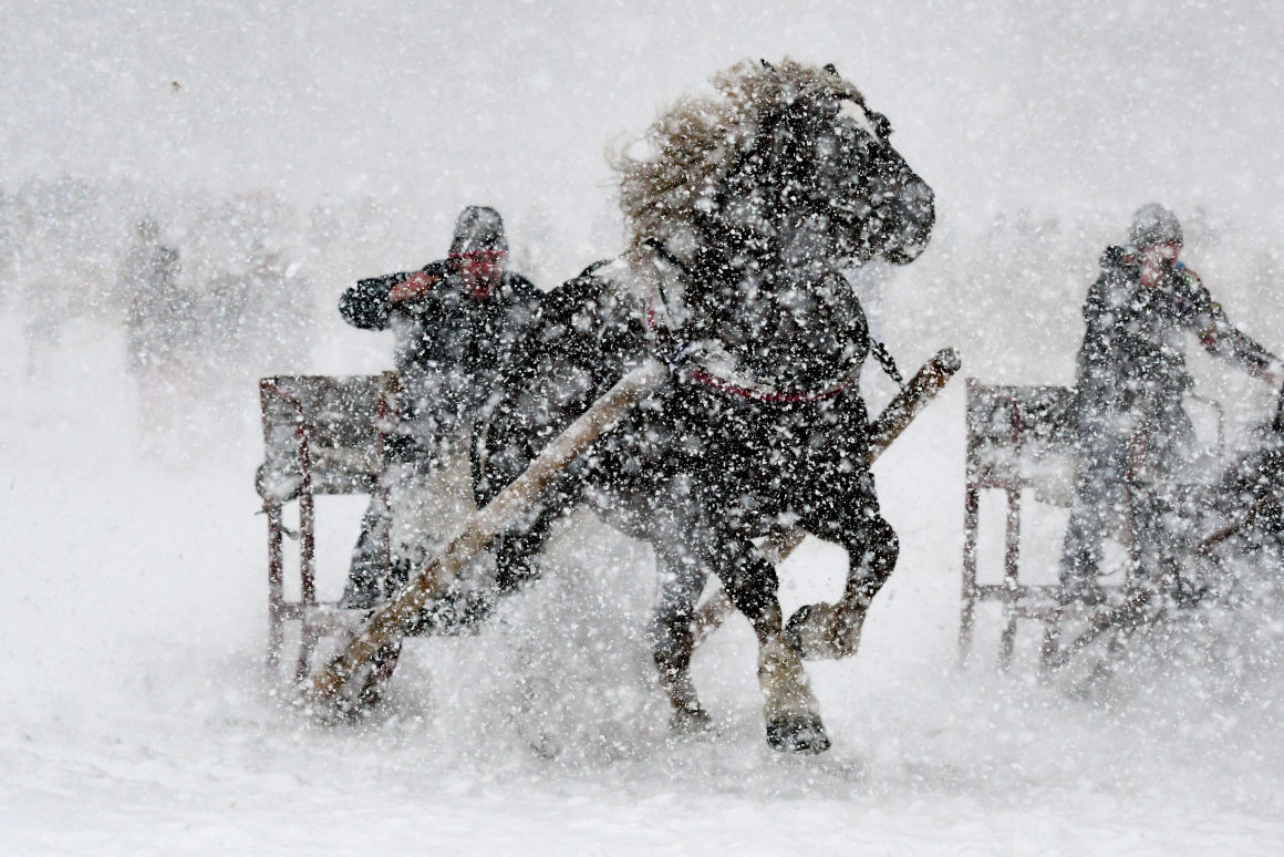 A participant of a horse-drawn sleigh race progresses through the snow in Rinchnach, southern Germany